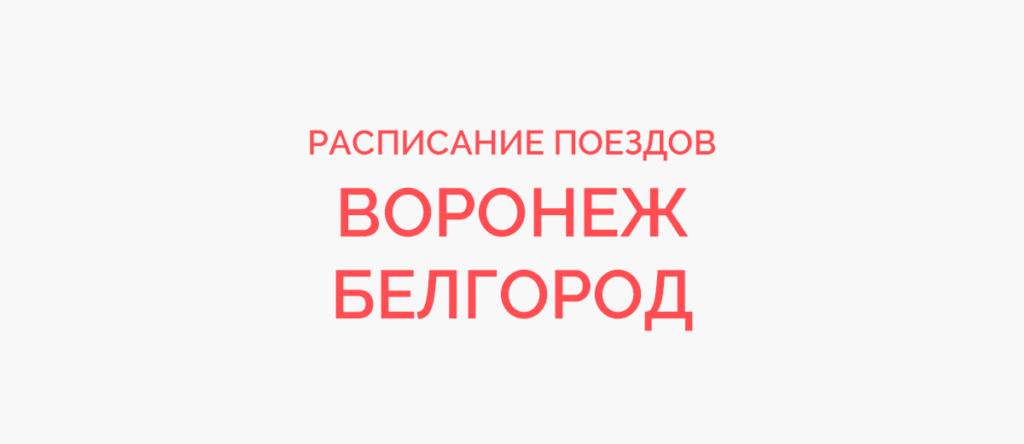 Поезд Воронеж - Белгород