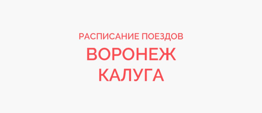 Поезд Воронеж - Калуга