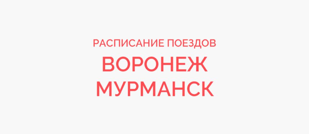Поезд Воронеж - Мурманск