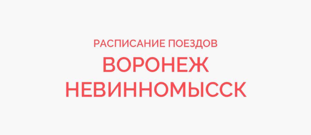 Поезд Воронеж - Невинномысск