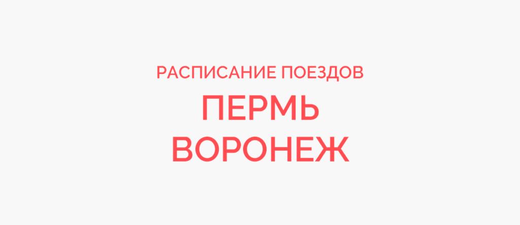Поезд Пермь - Воронеж
