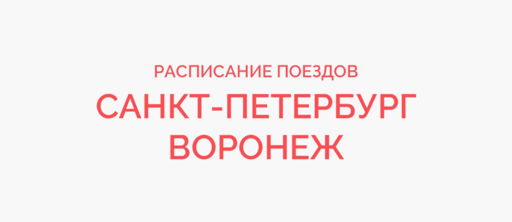 Поезд Санкт-Петербург - Воронеж